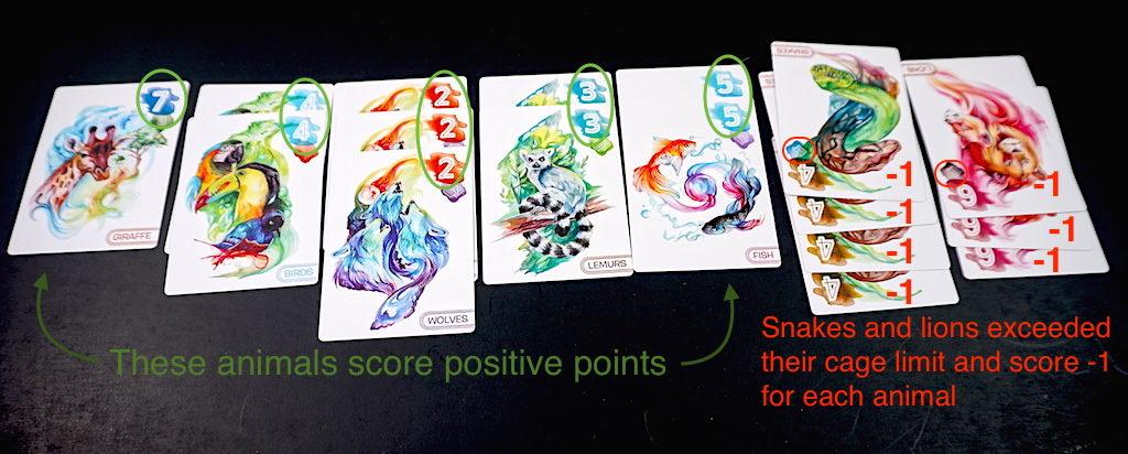 Zooscape scoring